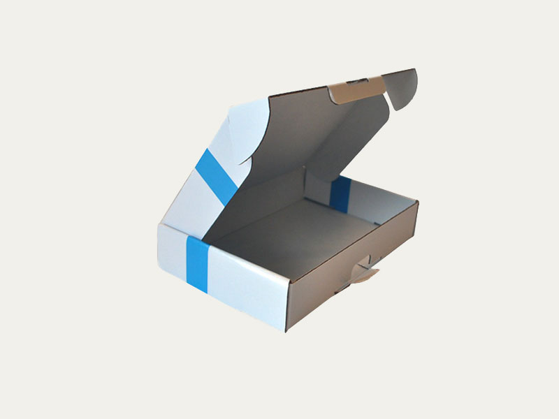 Custom Mailer Boxes Custom Printed Mailer Packaging Boxes At Inspiration Decorative Mailer Boxes